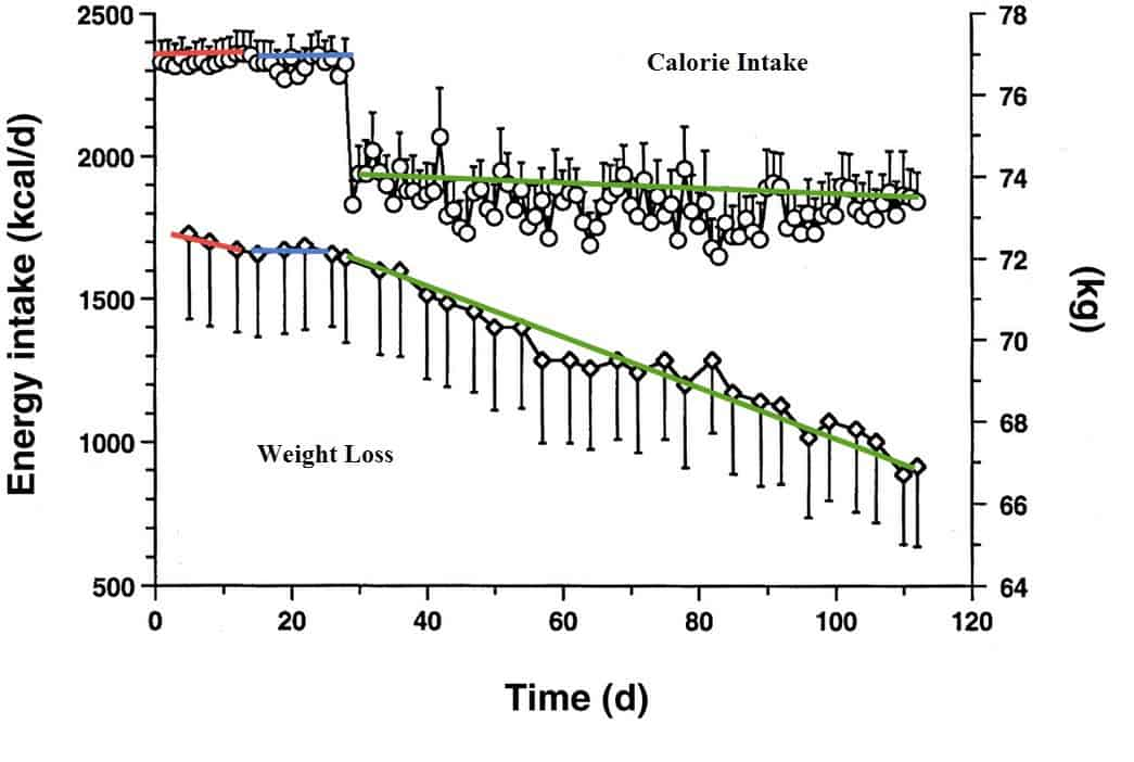 Protein weight loss over time
