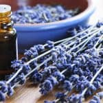 A Beginner's Guide to Essential Oils: What You Should Know