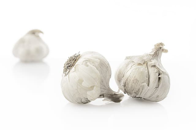 Garlic with a white background
