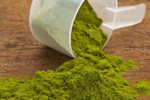 Where to Buy Wheatgrass Powder