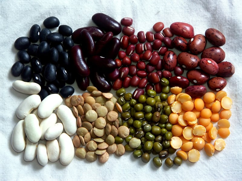 Selection of beans