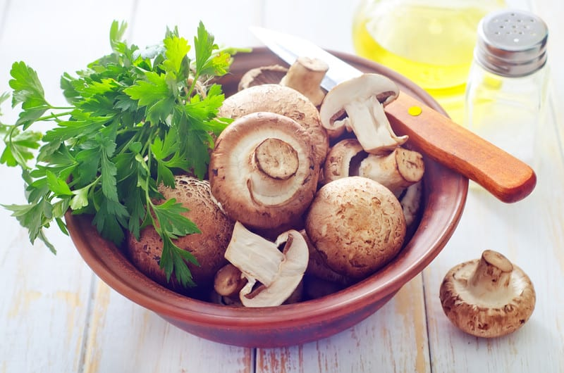 Get The Expert Answer Do Mushrooms Have Protein