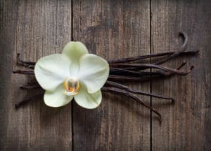 Types of Vanilla Beans