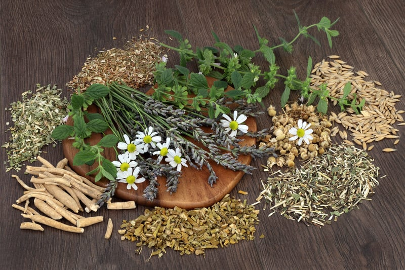 Herbs to treat sleep and anxiety naturally
