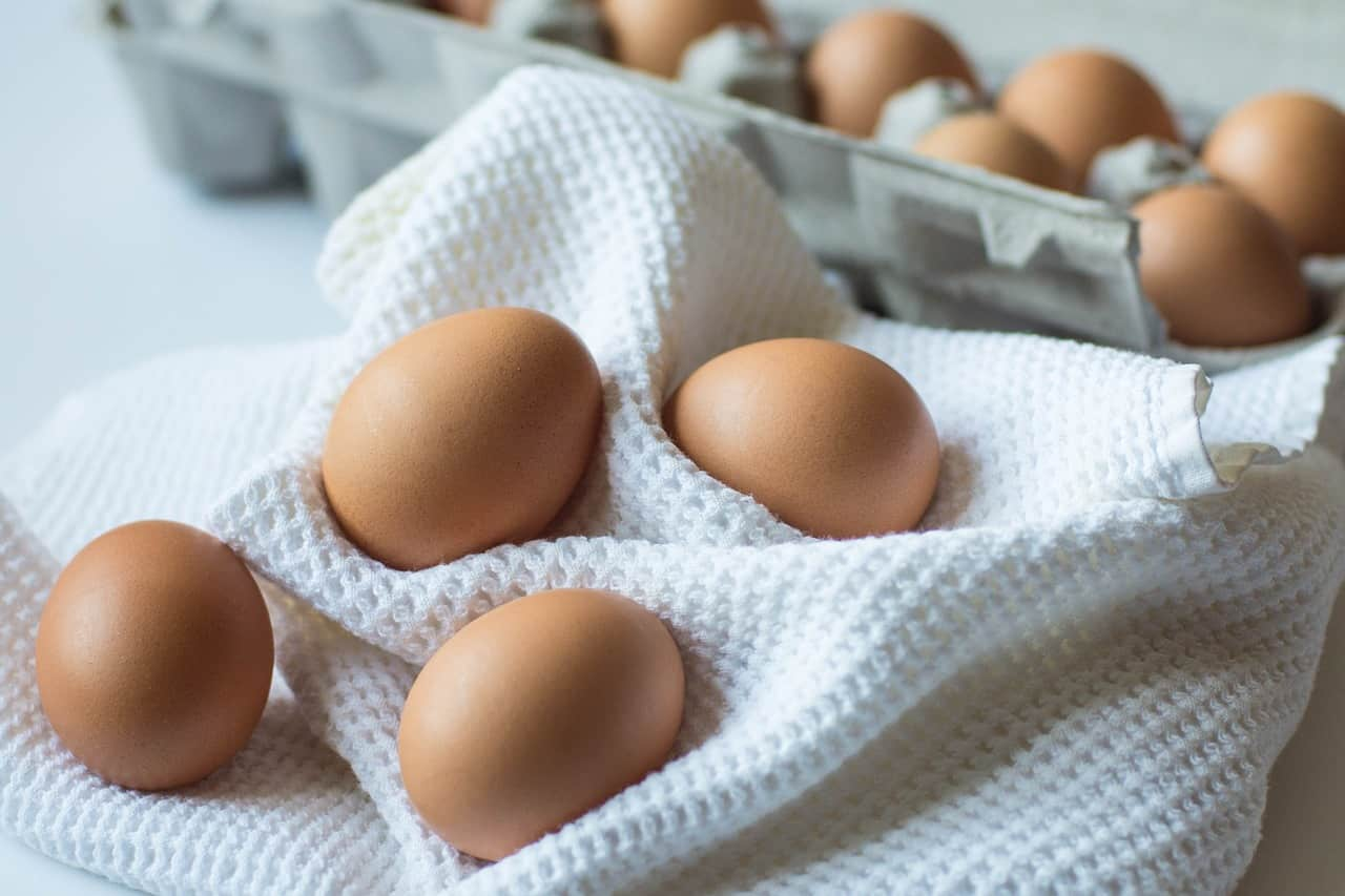 Eggs on cloth