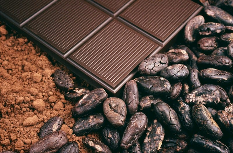 Dark chocolate, cocoa powder and cocoa beans
