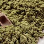 Hemp Protein vs Whey Protein – Which Should You Choose?