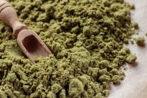 Hemp Protein vs Whey Protein - Which Should You Choose?